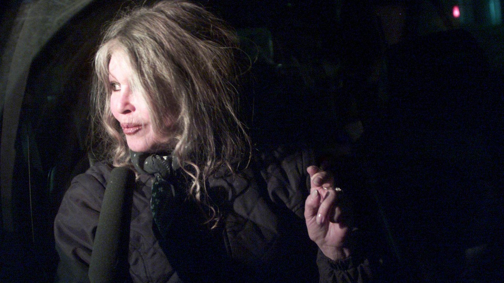 Осъдиха Брижит Бардо да плати глоба за обида на ловец