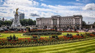 Бъкингамският дворец отваря градините си за посетители