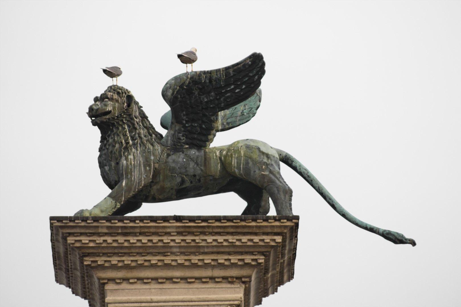 Статуята на крилатия лъв на площад Сан Марко и щетите, нанесени ѝ от гълъбите