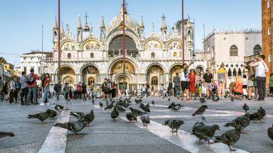 Венеция: Как най-прочутите гълъби в света изпаднаха в немилост