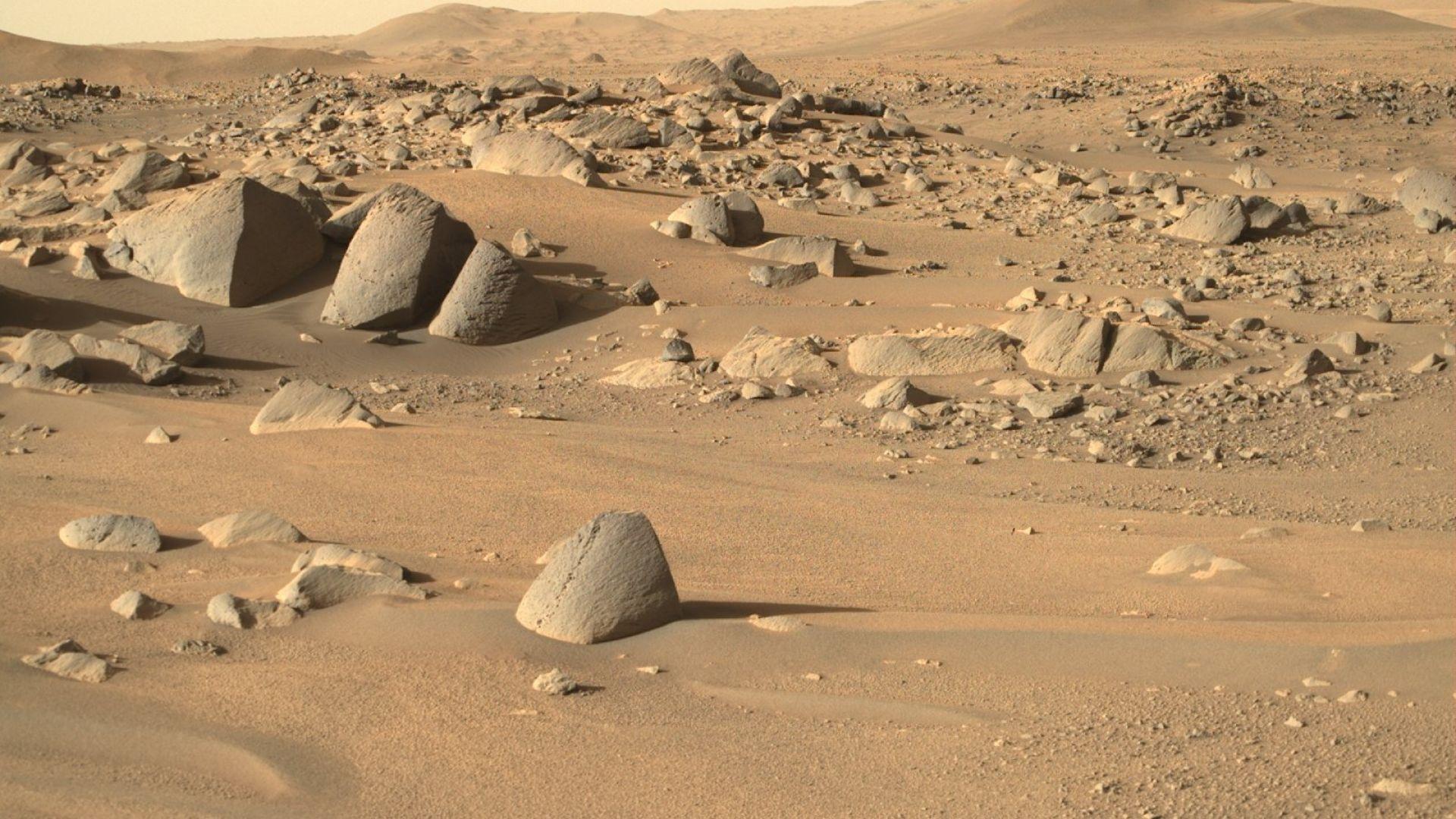 НАСА търси доброволци за едногодишна симулация на мисия на Марс
