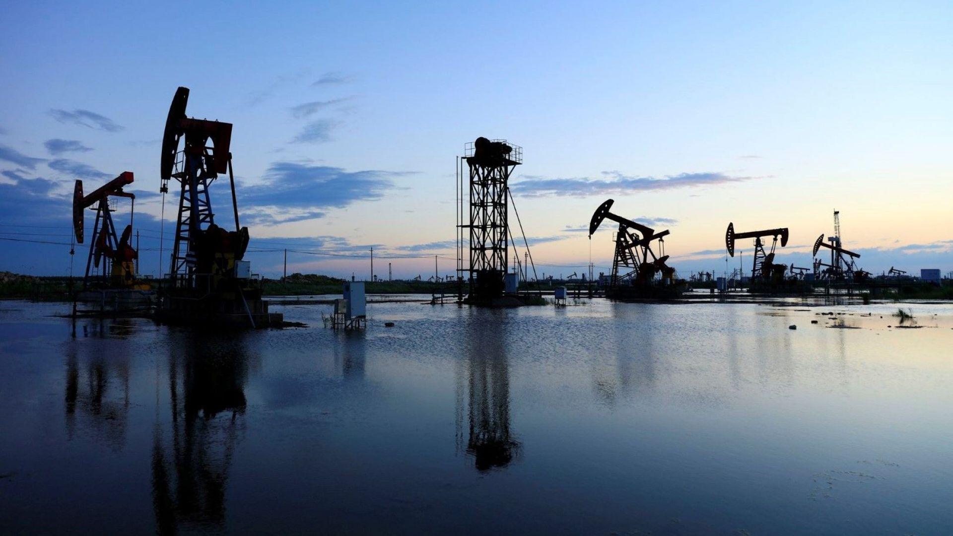 Цената на петрола остава без промяна