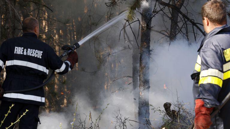 Огнената стихия край Свиленград: военни се включиха в потушаване на пожара