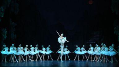 """Гледайте световната балетна класика """"Лебедово езеро"""" на открито на езерото """"Панчарево"""""""