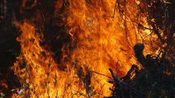 Пламна борова гора край Твърдица, военните изпратиха хеликоптер