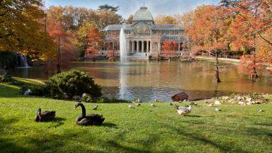 Булевард и парк в Мадрид вече са списъка на световното наследство на ЮНЕСКО