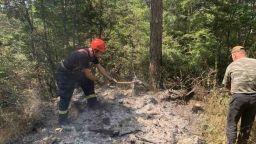 Локализираха пожара в Твърдица, опожарил над 550 дка горски територии