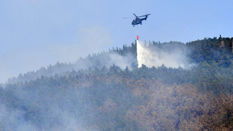 Гасиха с хеликоптер пожара край Твърдица, опожарил над 550 дка борова гора (снимки)