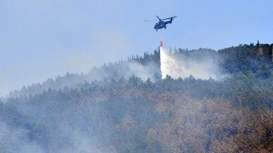 Огнището в Розино се активизира, над 20 къщи са изпепелени в Долно село