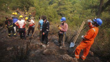 Продават терени в изгорели в Турция райони с обещание, че там ще се строи