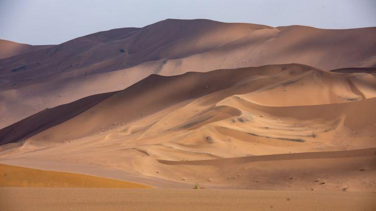 Мислите, че тук ви е топло? Вижте една от най-горещите пустини в света! (снимки)
