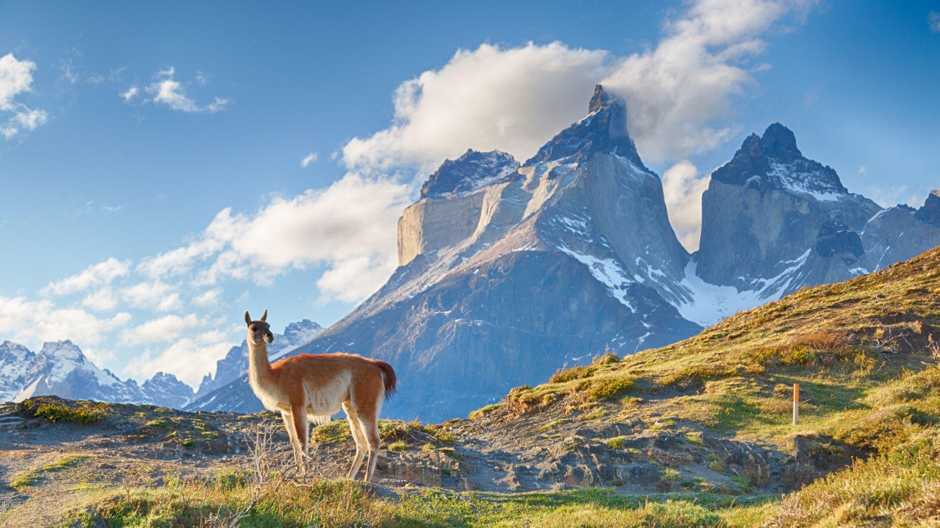 Рекордната суша в Южна Америка остави върхове в  Андите без сняг