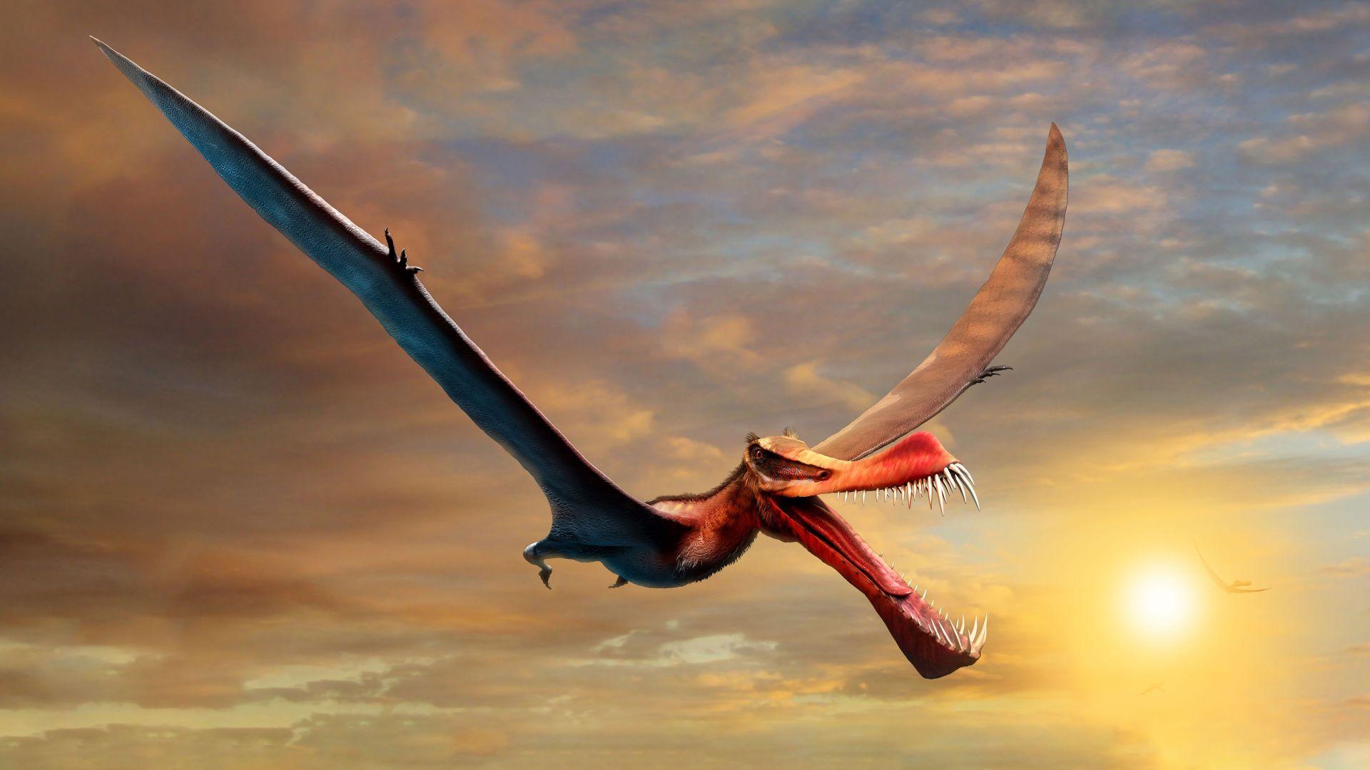 Откриха фосил на динозавър, който прилича на дракон