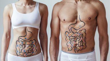 Кога метаболизмът е най-бърз и най-бавен