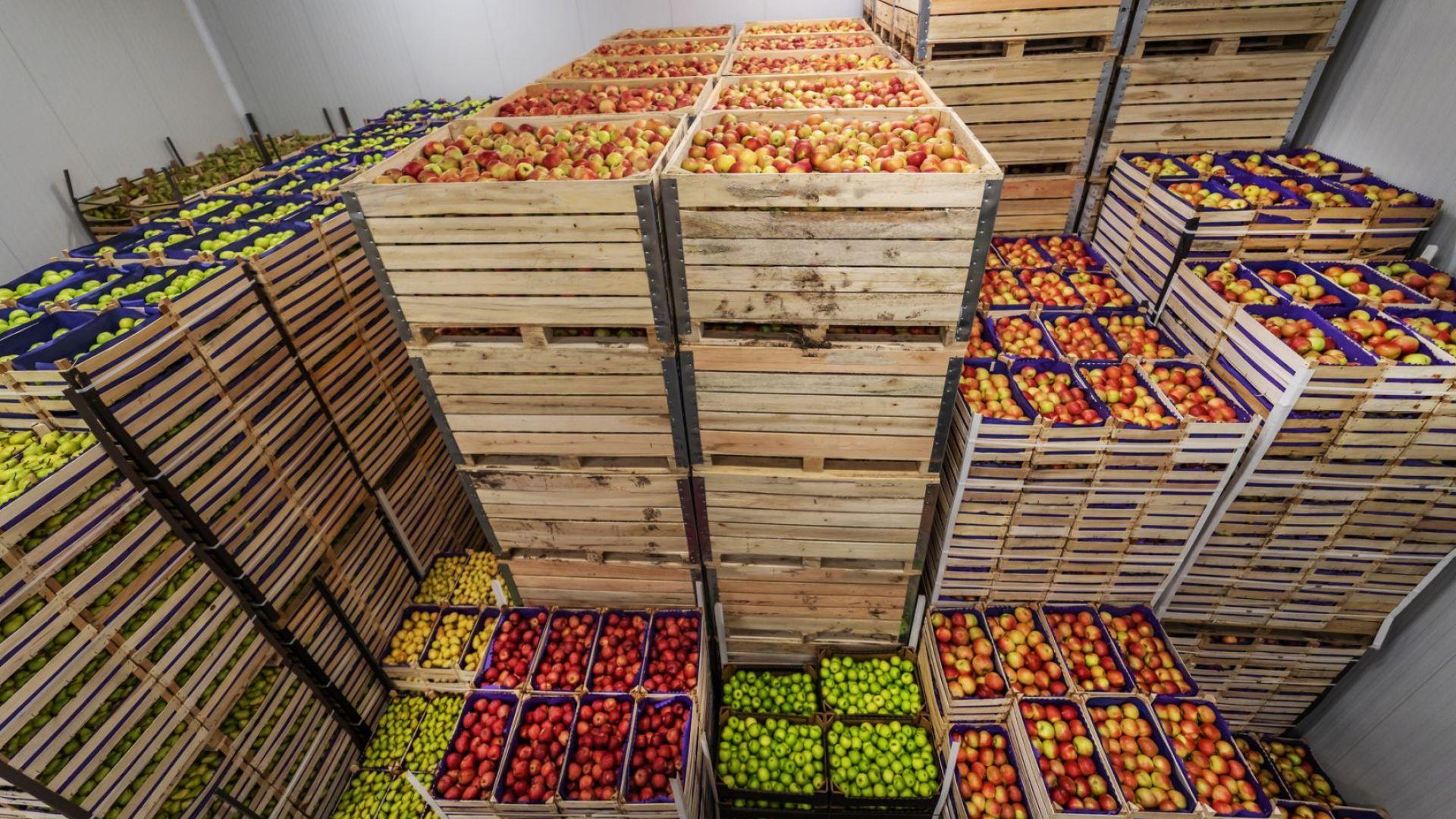 През втората седмица на август поскъпването на храните на едро се забавя