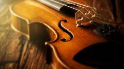 Учени потвърдиха, че тайната на цигулките Страдивариус е в химикалите