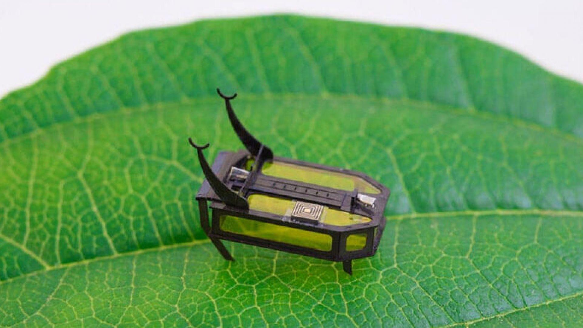 Робот-бръмбар постави световен рекорд
