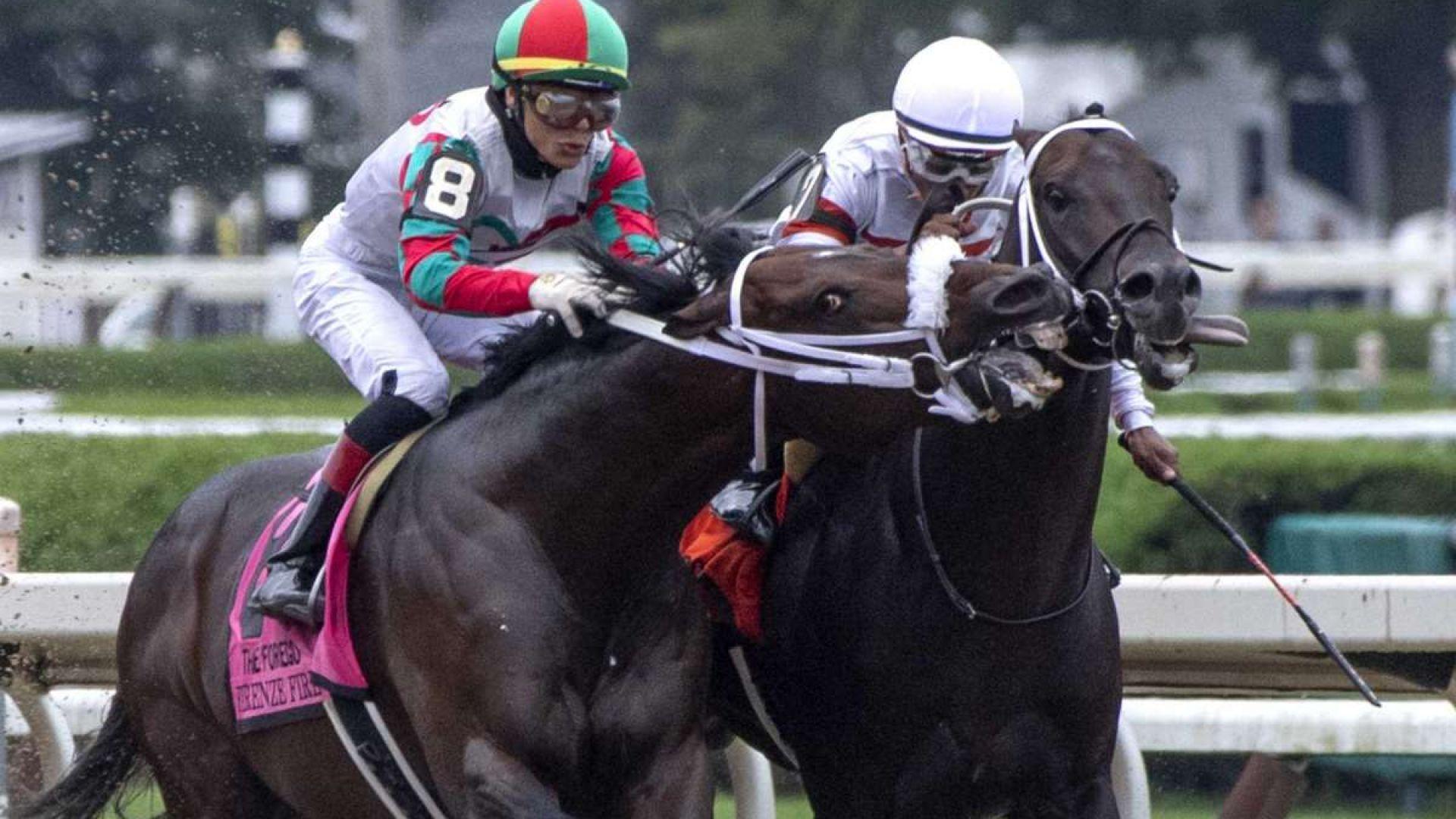 Състезателен кон се прояви като Майк Тайсън на финалната права