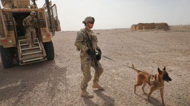 Зоозащитници обвиниха Пентагона: Зарязаха армейски кучета на летището в Кабул без храна и вода (снимки)