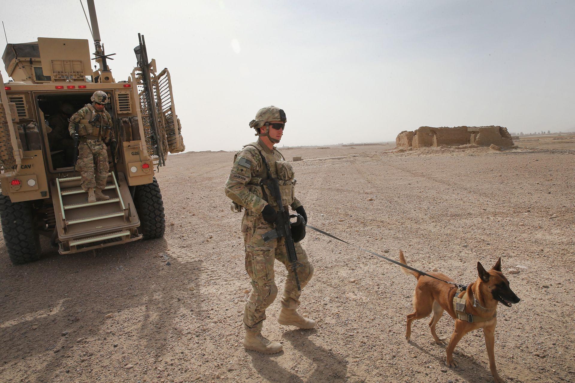Зарязаха армейски кучета на летището в Кабул без храна и вода (Снимки)