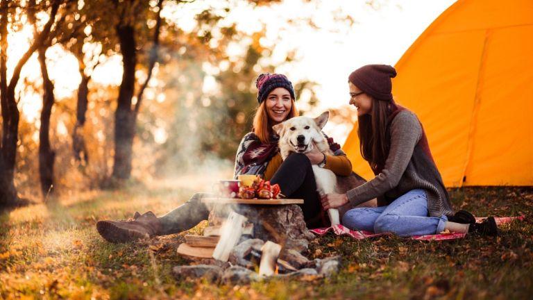 Защо есента е перфектното време за къмпинг (и какво да вземете)?