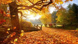 Хубавото време свършва, идва есен с температури под 20 градуса