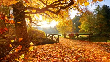 Студени утрини, но по-топло и слънчево денем до края на седмицата