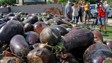 Земеделци изсипаха унищожената си от градушка реколта на пътя Пловдив-Карлово