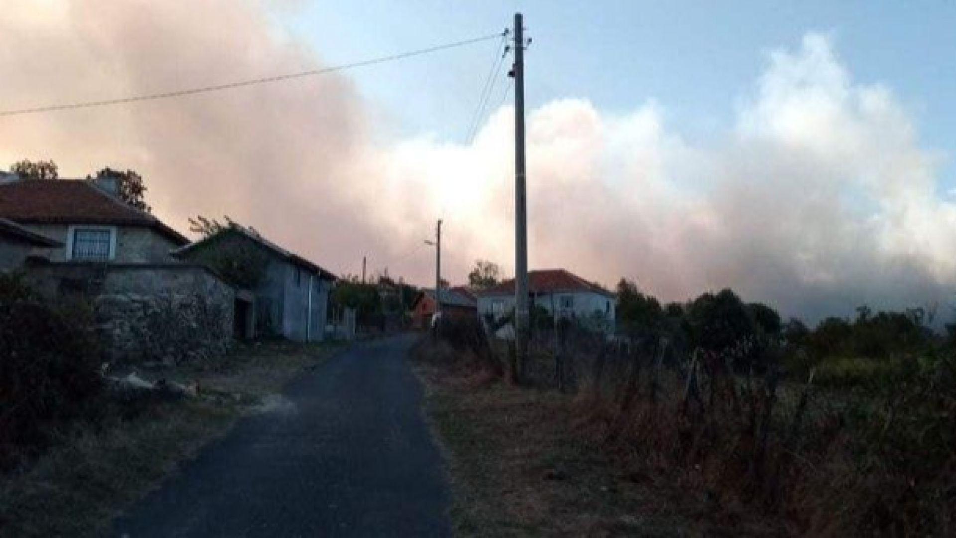 Пожарът в Кирковско е локализиран