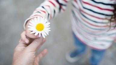 Само 14% от българите склонни да станат приемни родители