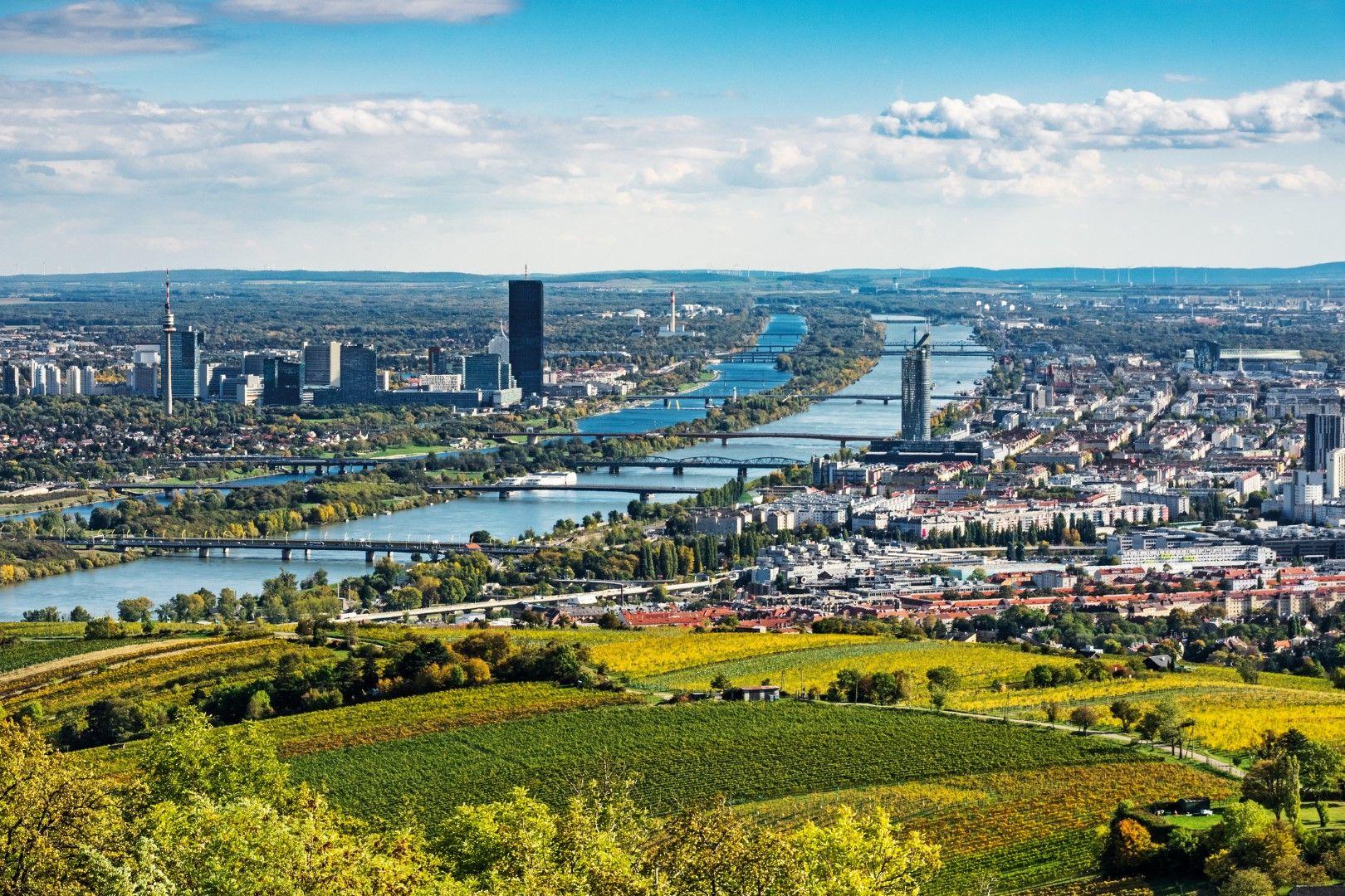 Виена, Дунав и лозя край австрийската столица