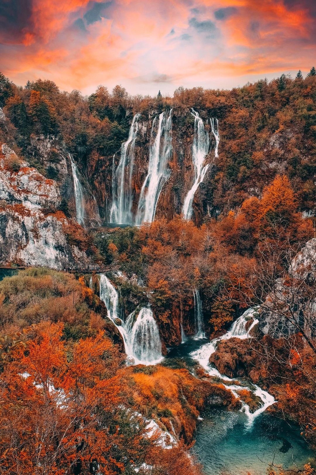 С напредването на есента част от дърветата остават голи