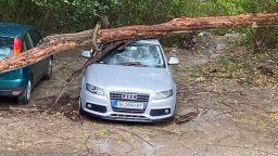 Мощна буря се изви над Ловеч, изтръгна дървета и прекъсна електричеството