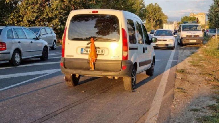 Автомобил блъсна и уби на място пешеходец на изхода от