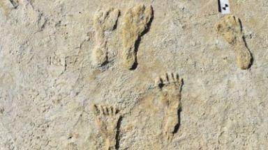 Отпечатъци от 23 000 години пренаписват човешката история на Америка (видео)