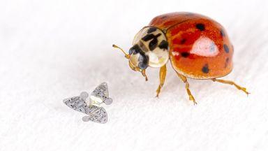 Създават микроскопични летящи чипове за наблюдение