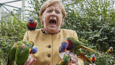 Ангела Меркел и папагалите - канцлерът на прощална обиколка преди изборите (снимки)