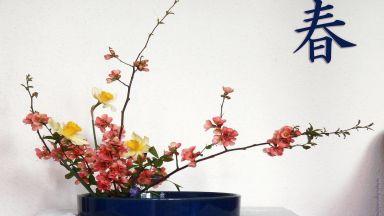 """Школата """"Кагецу"""" и красивата сила на цветята"""