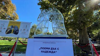 """Започва информационна кампания """"Поеми дъх с надежда"""" по повод Световния ден на белия дроб"""