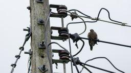 ЧЕЗ подобрява тока в Кремиковци, Елин Пелин и Горна Малина