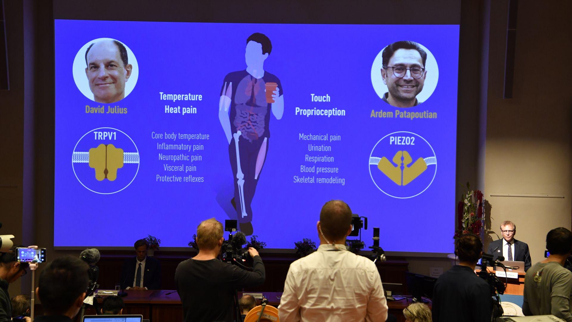 Учени от САЩ спечелиха Нобеловата награда за медицина