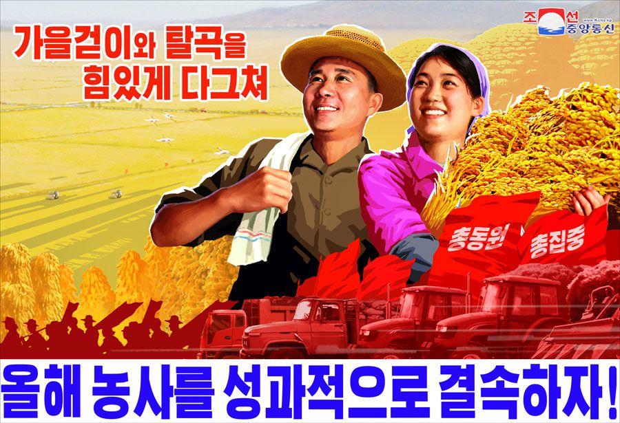 В севернокорейските форуми и социални мрежи има пропаганда, вместо реклама