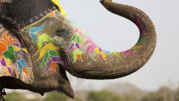 Индия и Индонезия се отварят за чуждестранни туристи