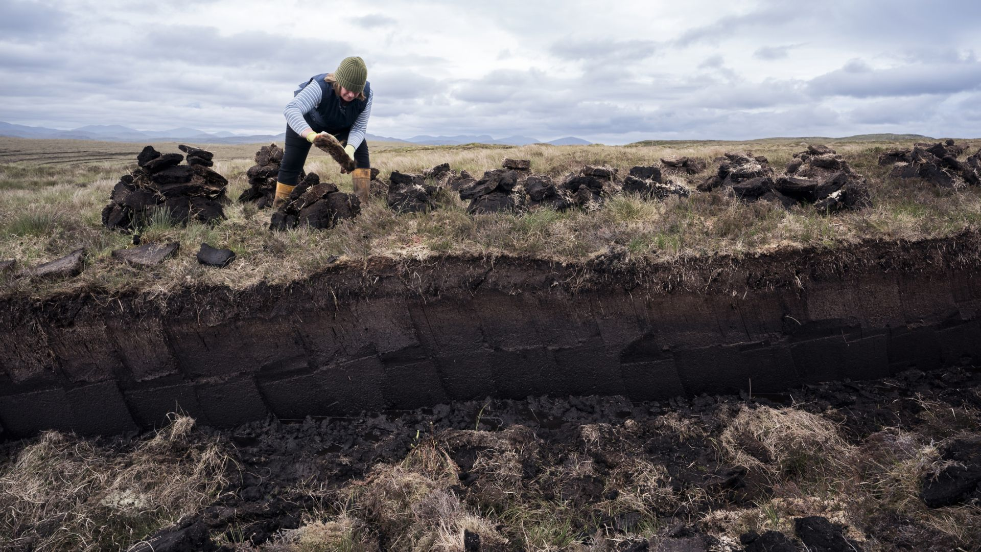 Естонски учени правят батерии от торф