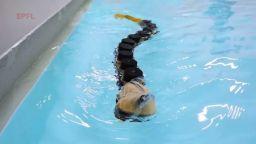 Създадоха робот, вдъхновен от ужасяваща риба-паразит