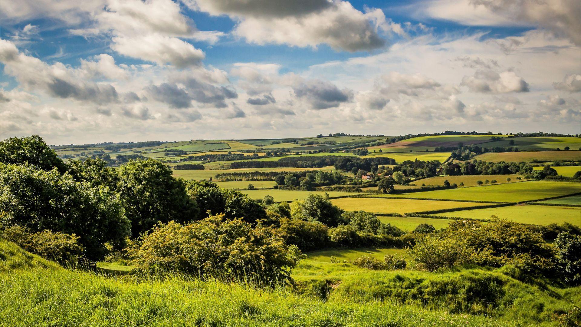 Необятни зелени гледки характеризират Линкълншир