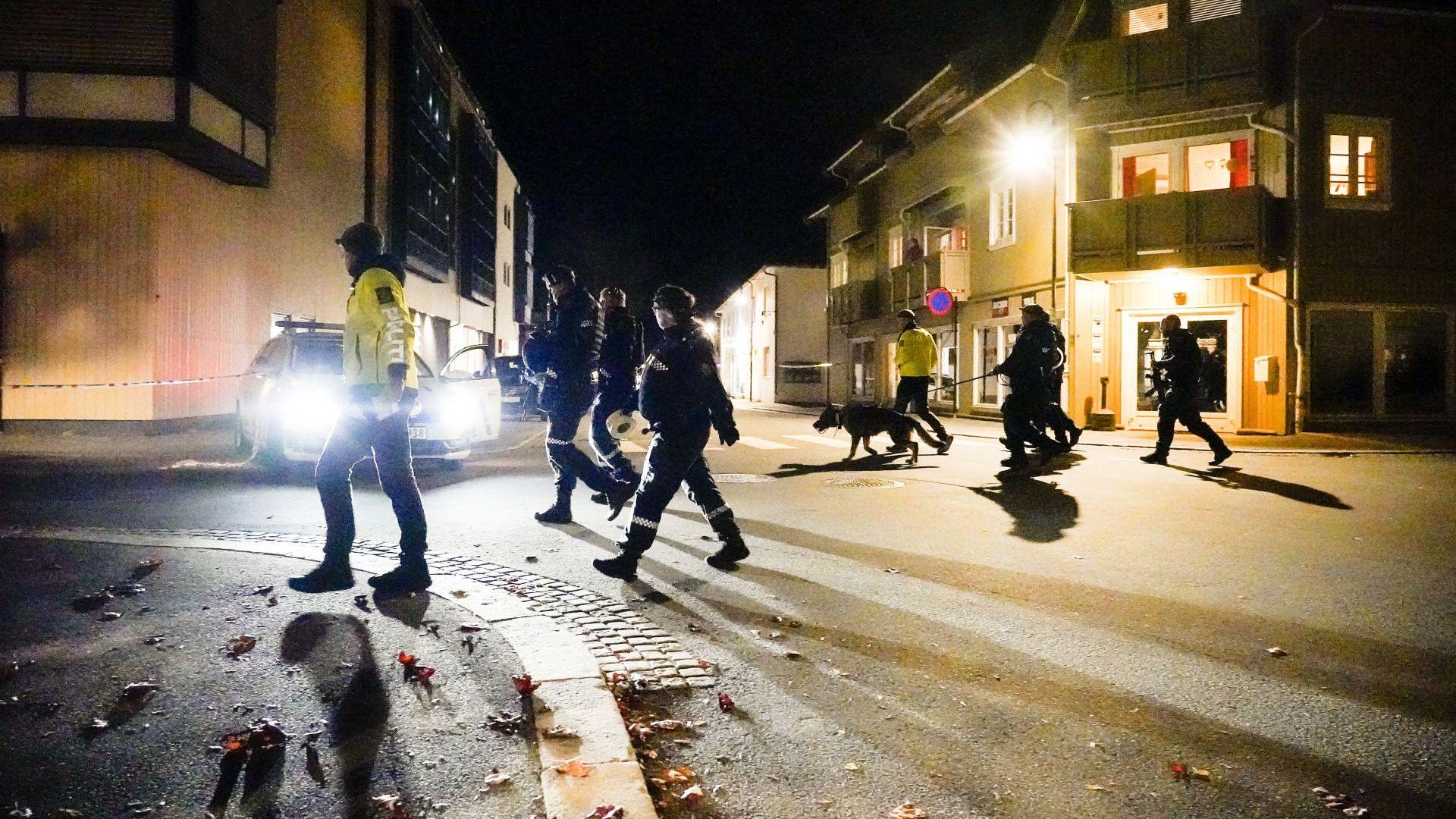 Петима убити и двама ранени при нападение с лък в Норвегия, не изключват атентат (видео)