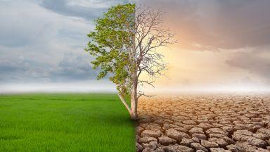Климатичните промени имат връзка със затлъстяването