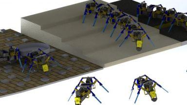 Създадоха роботизирани мравки