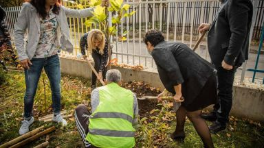 Засаждат над 600 дървета в столичните училища и детски градини с помощта на олимпийски шампион
